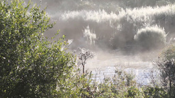 morning fog on the river Stock Video Footage