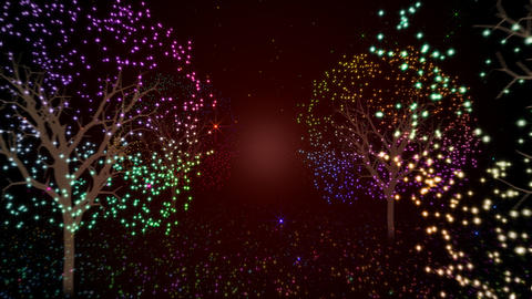 Illuminations tree Stock Video Footage