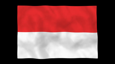 National flag A22 IND HD Stock Video Footage