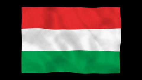 National flag A46 HUN HD Stock Video Footage