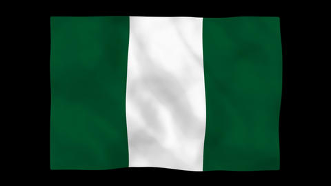 National flag A50 NGR HD Stock Video Footage