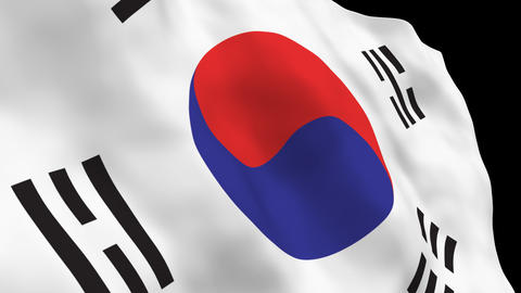 National Flag B13 KOR HD Stock Video Footage