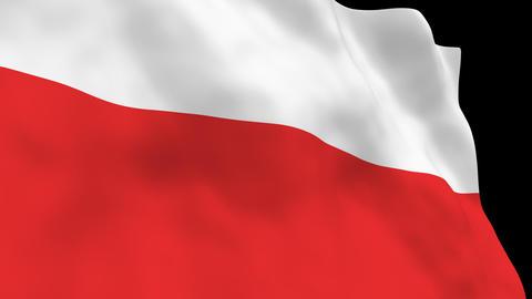 National Flag B21 POL HD Animation