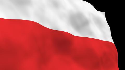 National Flag B21 POL HD Stock Video Footage