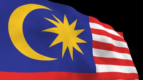 National Flag B41 MAS HD Stock Video Footage