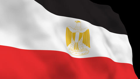 National Flag B49 EGY HD Stock Video Footage