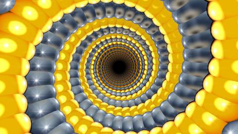 golden snail spiral Stock Video Footage