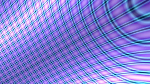 purple curve grid Stock Video Footage