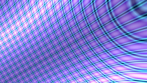purple curve grid Animation