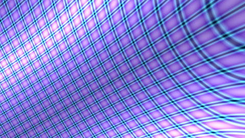 purple curve grid Stock Video Footage
