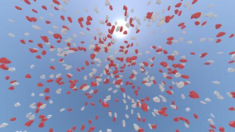 balloon 2 h cb HD Stock Video Footage