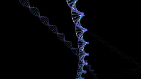 DNA B2 HD Animation