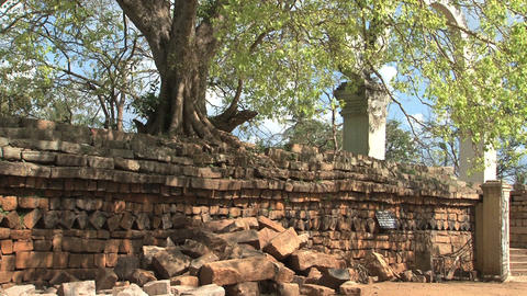 Sri Maha Bodhi, Anuradhapura, Sri Lanka Footage
