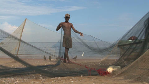 Fish nets Stock Video Footage