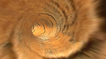 flying in hairy wood tunnel hole Stock Video Footage