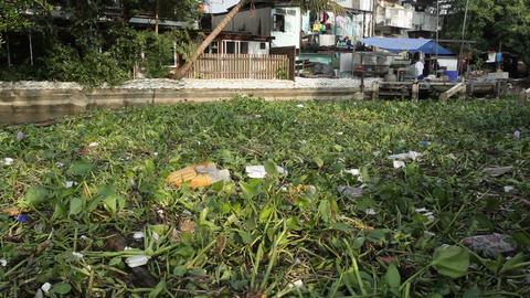 Water trash plastic pollution Footage