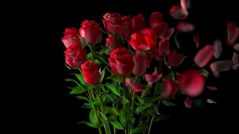 Broken bouquet of roses Stock Video Footage
