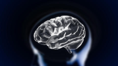 white brain with head section glow, Stock Animation