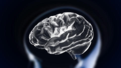 white brain with head section glow Stock Video Footage