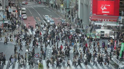 Tokyo Hachiko crossing slow motion Footage