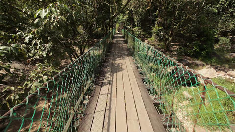 Crossing jungle bridge Stock Video Footage