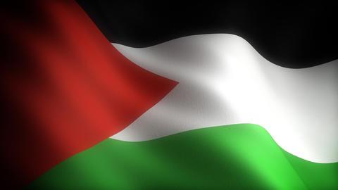 Flag of Palestine Stock Video Footage
