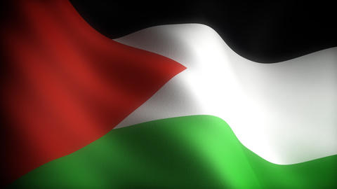Flag of Palestine Stock Video Footage