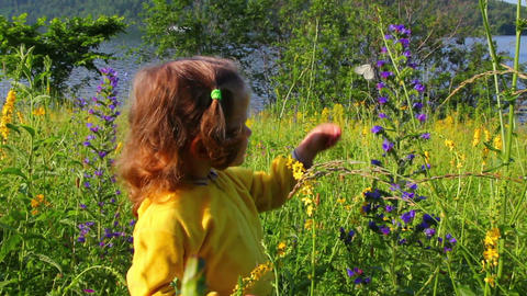 little girl and butterfly on flower Stock Video Footage