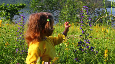 little girl and butterfly on flower Footage