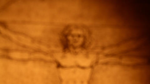 Leonardo da Vinci anatomy Stock Video Footage