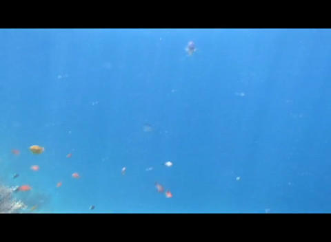 hrg 01 Stock Video Footage