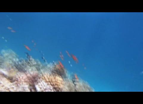 hrg 01 Footage