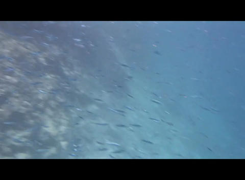 hrg 05 Stock Video Footage