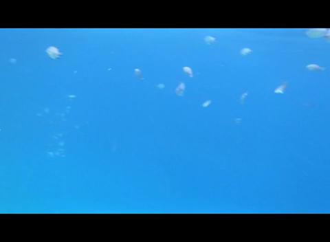hrg 07 Footage