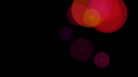 circle buble colorful Animation