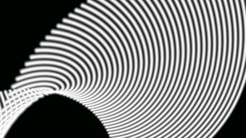 monochrome pulsing line Stock Video Footage