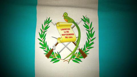 Flag Guatemala 04 Stock Video Footage