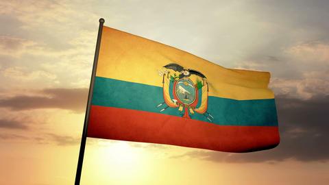 Flag Ecuador 03 Stock Video Footage
