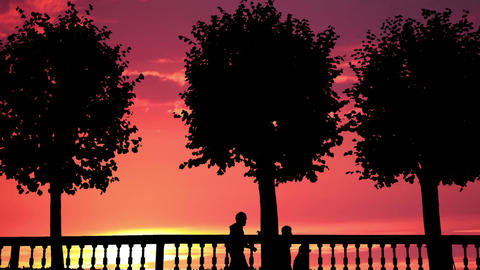 Silhouettes. Timelapse Stock Video Footage