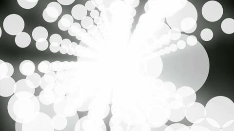 white circle flare Stock Video Footage