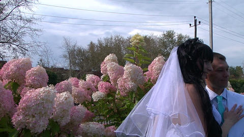 Glidecam: Wedding Stock Video Footage