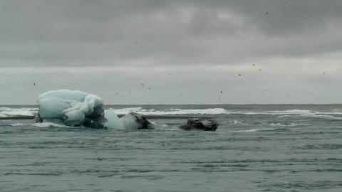 iceberg moving in streaming water Footage