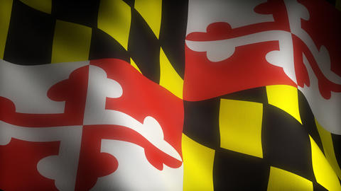 Flag of Maryland Stock Video Footage