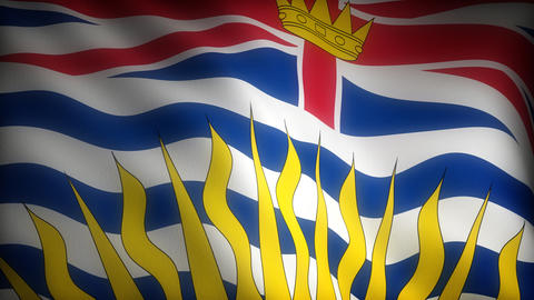Flag of British Columbia Stock Video Footage