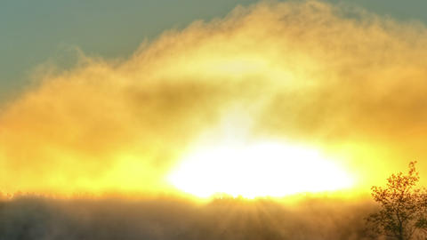 Sunrise through the mist. True HDR. Bright colors  Footage