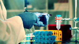 blood tests in a medical laboratory Stock Video Footage