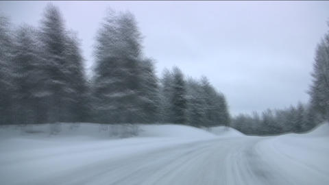 Car on winter forest road Stock Video Footage