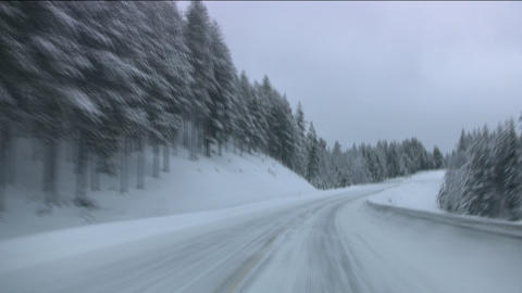 Car on winter forest road Footage