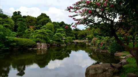 Japanese‐style garden TimeLapse Stock Video Footage