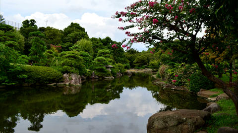 Japanese‐style garden TimeLapse Stock Video Footage